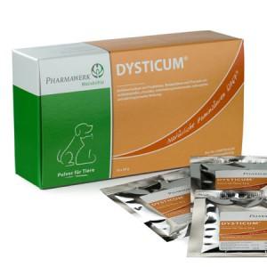 Dysticum
